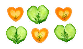 Slices of cucumber and carrot Stock Image