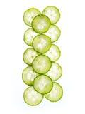 Slices of cucumber isolated on white background. Slices of transparent cucumber isolated on white background stock image