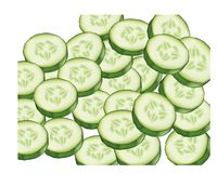 Slices of cucumbers Stock Photos