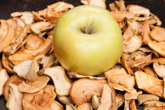 Slices of dried apples with fresh apple Royalty Free Stock Photo