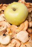 Slices of dried apples with fresh apple Royalty Free Stock Images
