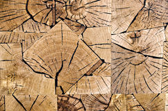 Slices of end grain wood. Floor covering made from slices of end grain wood royalty free stock photography