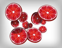 Slices of fresh citrus grapefruit falling and flying Stock Image