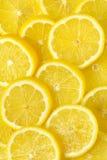 Slices of fresh lemon stock photography
