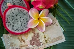 Slices of Fresh Raw Exotic Tropical Thai Dragon Fruit also called Pitayas with National Currency Baht on Banana Leaf