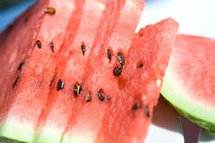Slices of fresh watermelon Royalty Free Stock Photography