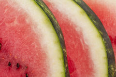 Slices of fresh  watermelon close up Stock Images