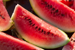 Slices of fresh watermelon Royalty Free Stock Image