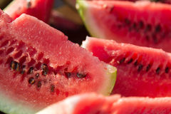 Slices of fresh watermelon Stock Image