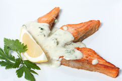 Slices of fried red fish. With white sauce Stock Image