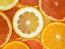 Slices of fruits. Grapefruit, orange and lemon Royalty Free Stock Photos