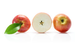 Slices of Gala Apple Stock Photography