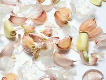 Garlic slices and garlic husks stock images