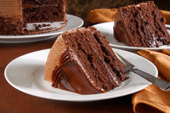 Slices of gourmet chocolate cake Stock Photo