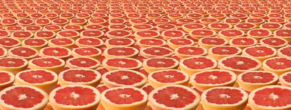 Slices of grapefruit. Stock Photo