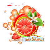 Slices grapefruit with flowers Royalty Free Stock Photos