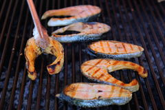 Slices of grilled fish Stock Photos