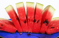 Slices of juicy watermelon served on blue plate Stock Image