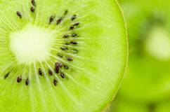 Slices of kiwi fruit. Royalty Free Stock Photo