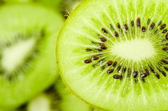Slices of kiwi fruit. Stock Image