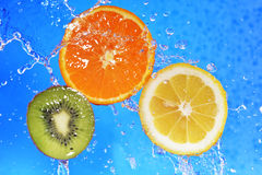 Slices of kiwi,  orange and  lemon Stock Images