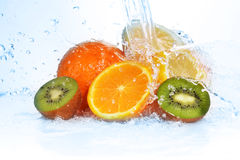 Slices of kiwi,  orange and  lemon Stock Image