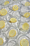 Slices of lemon in empty martini glasses Royalty Free Stock Photography