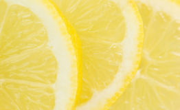 Slices Lemon Fruits VI Royalty Free Stock Photo