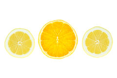 Slices of lemon orange. Royalty Free Stock Photos