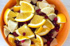 Slices of lemon and orange with cranberries. Slices of lemon and orange mixed with cranberries in a round bowl Stock Images