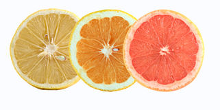 Slices of lemon, orange, and grapefruit Royalty Free Stock Photos