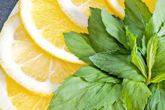 Slices of lemon and orange with mint leaves Royalty Free Stock Photos
