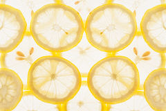 Slices of lemon on a white background. Pattern. Macro. Royalty Free Stock Photo