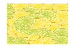 Slices of lemons and limes. Half sections of lemons and limes covering the background Royalty Free Stock Photos