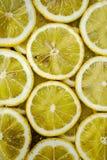 Slices of lemons Stock Photo