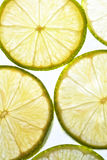 Slices of Lime Royalty Free Stock Photos