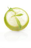 Slices of lime with a branch mint Stock Photos
