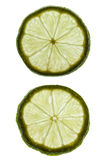 Slices of lime Stock Images