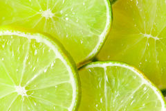 Slices of limes royalty free stock photography