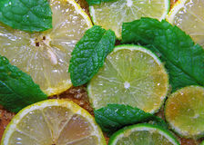 Slices of limes and lemons, leaves of mint and cane sugar Stock Photos
