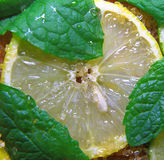 Slices of limes and lemons, leaves of mint and cane sugar Royalty Free Stock Image