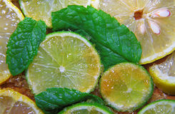 Slices of limes and lemons, leaves of mint and cane sugar Stock Photography
