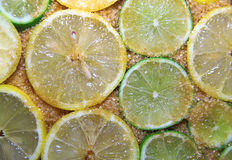 Slices of limes and lemons mixed with cane sugar Royalty Free Stock Images