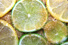 Slices of limes and lemons mixed with cane sugar Royalty Free Stock Photos
