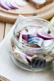 Slices of marinated mackerel with onion in a jar, lime, laurel and bread Stock Image