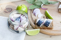 Slices of marinated mackerel with onion in a jar, lime, laurel and bread on wooden board Royalty Free Stock Photos