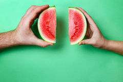 Slices Mini Watermelon in Female and Male Hands with Green Copy Space. Royalty Free Stock Image
