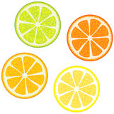 Slices Of Citrus Fruits Royalty Free Stock Photo