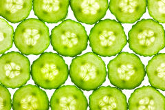 Free Slices Of Fresh Cucumber / Background / Back Lit Royalty Free Stock Photography - 23664707