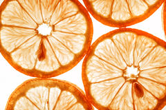 Slices Of Orange Stock Photos